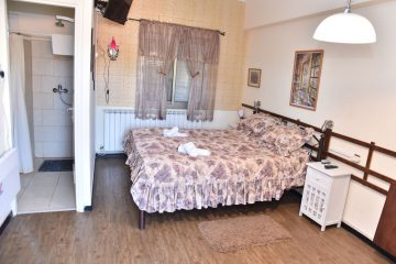 Standard Double \ twin room with shower